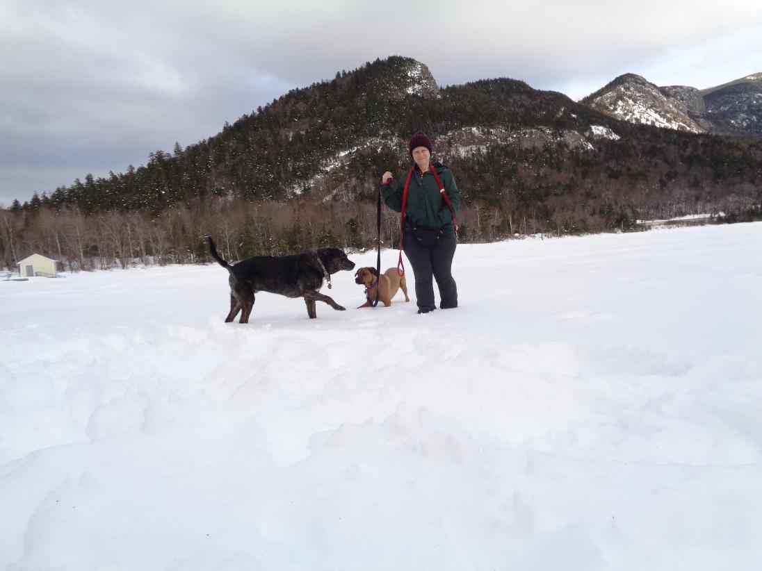 Echo Lake March 2018