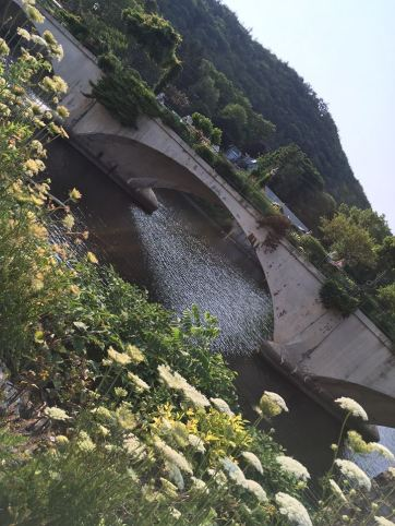 BRidge of flowers July 2016 3