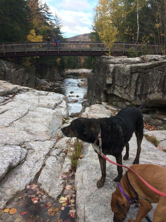 Rockky Gorge October 2017 2