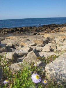 Halibut Point Sept 2012 3