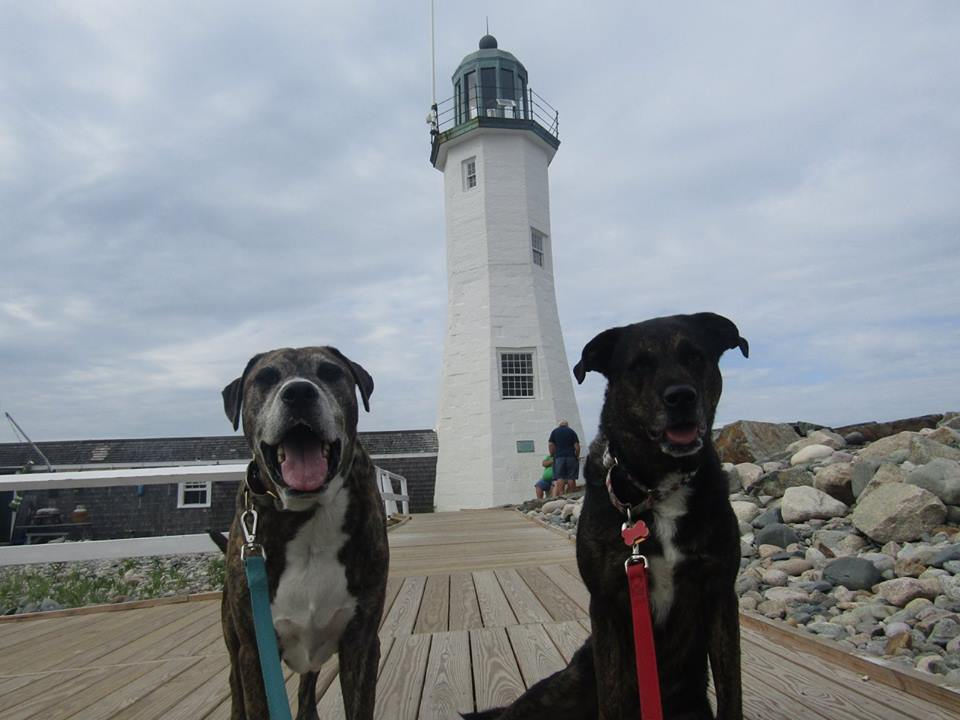 Lighthouse July 2016 Scituate