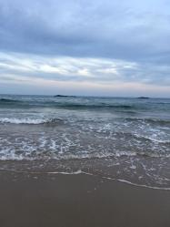 singing beach 2