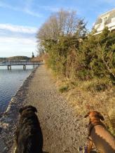 Fisherman's Walk York