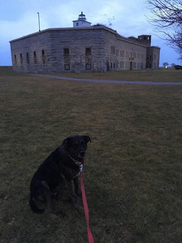 New Bedford Fort Taber.jpg