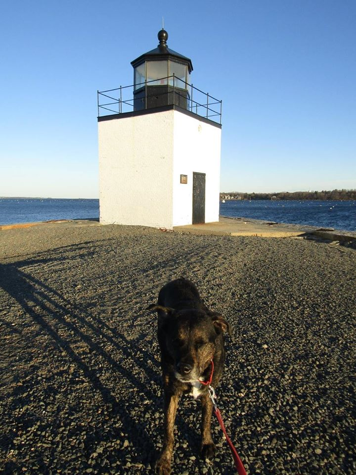 Salem Lighthouse Shadow