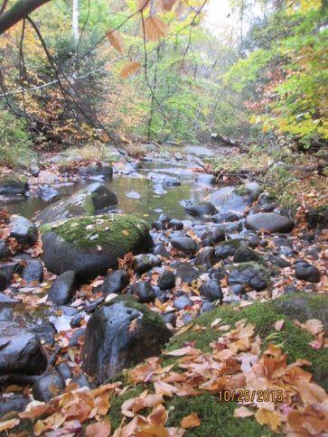 Willard Brook 2