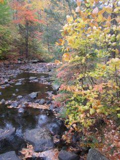 Willard Brook 3