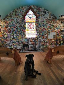 dog chapel 5