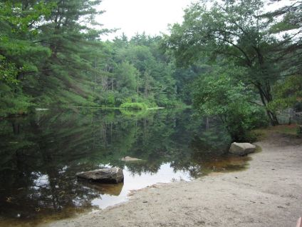 great brook blog 4