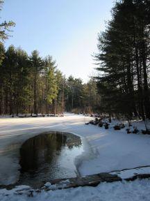 Great brook winter