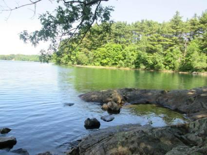 Spot Pond 1