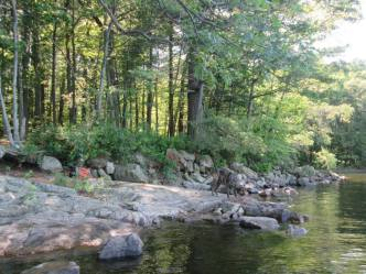 Spot Pond 6